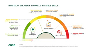 Investor Strategy Towards Flexible Space